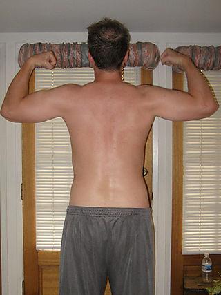 Back60
